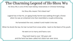 The Charming Legend of Ho Shou Wu