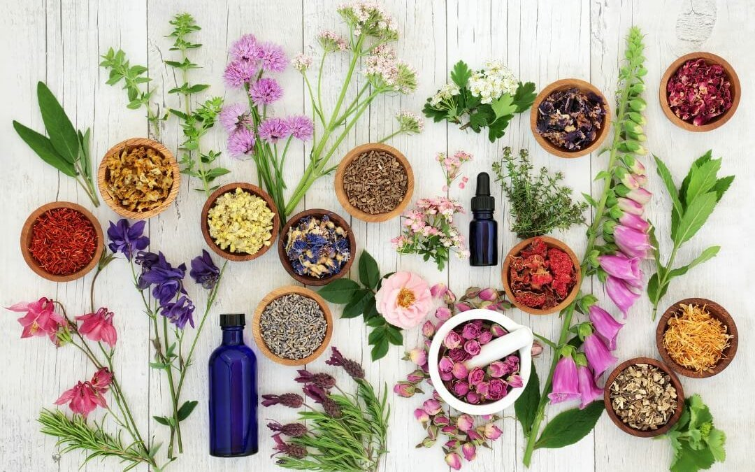 Adaptogenic Herbs and How We Formulate Our Products