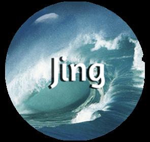 Jing - Organ System